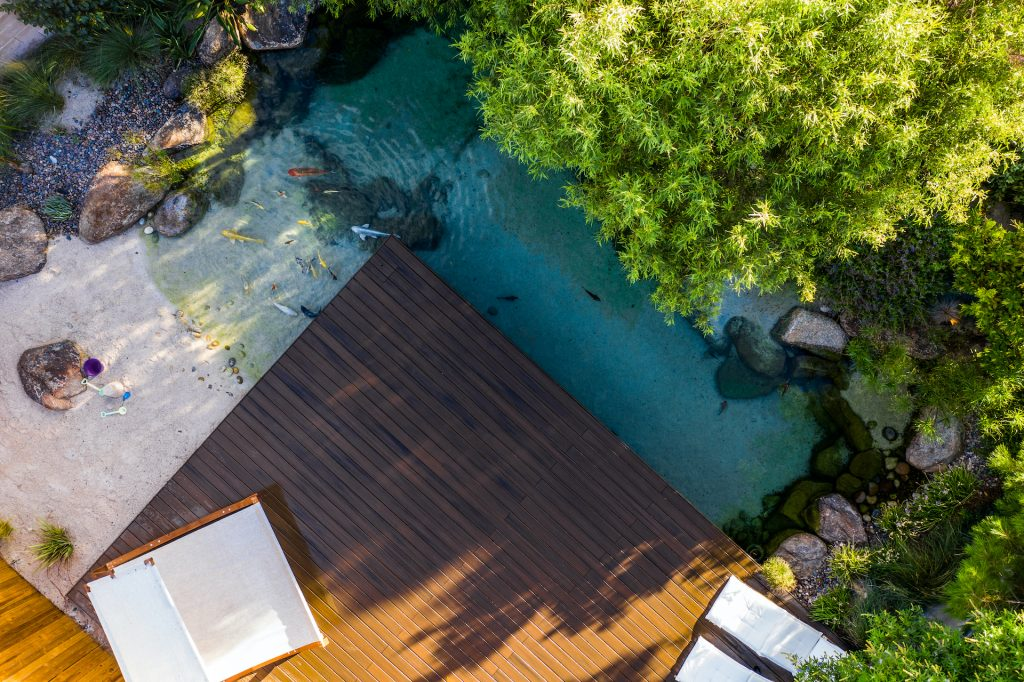 A beautiful Las Vegas natural swimming pool/pond with sand, multiple koi fish varieties, and beachfront with a floating deck in a custom landscaped backyard by Stonewall Creek.